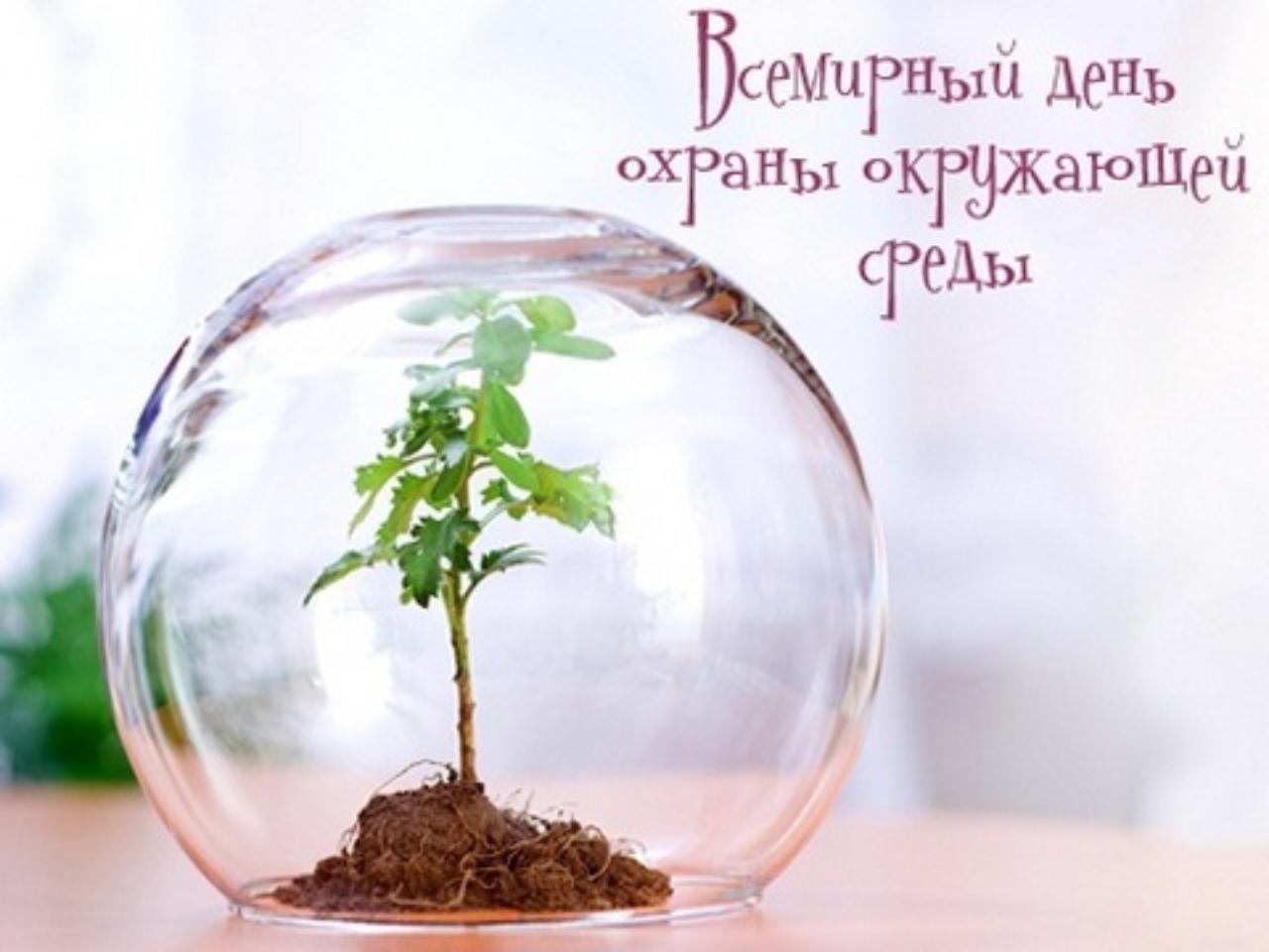 Поздравления с годом экологии